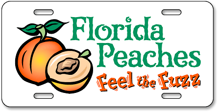 Florida Peaches: Feel the Fuzz custom license plates - detail